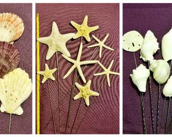 Coastal BEACH WEDDING -  Wedding Bouquet Centerpieces FLORAL Accent Picks Stems - Wired Seashells, Starfish, Sea Urchins
