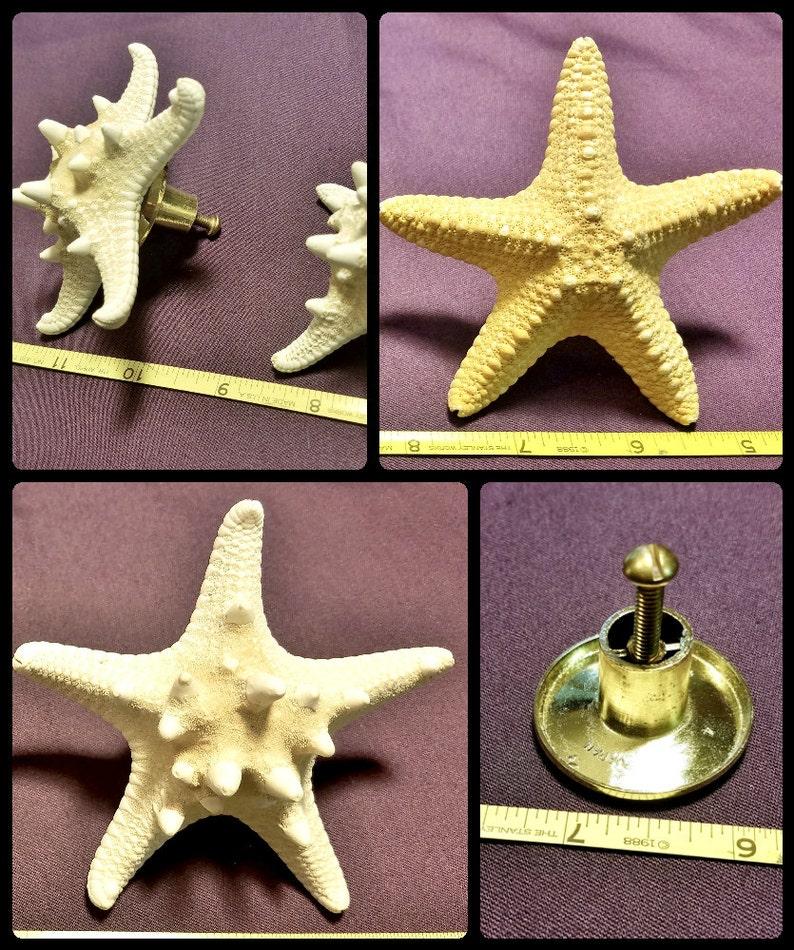 Coastal Beach Cabinet Starfish Pull Knobs  Starfish Drawer image 0