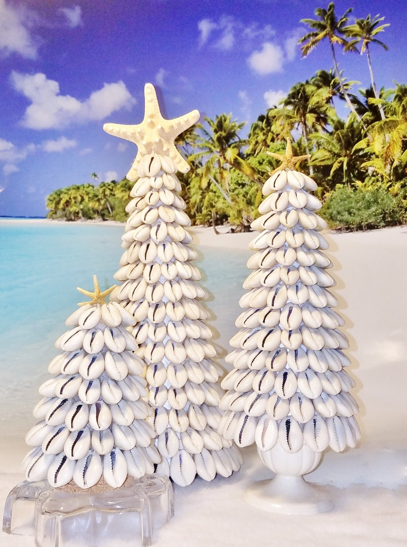 Coastal Beach Ringtop or Money Cowrie Seashell Tabletop Tree & image 0