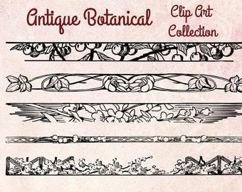 Digital Vintage Antique Clip Art Botanical Borders - Print at Home Decor - INSTANT DOWNLOAD