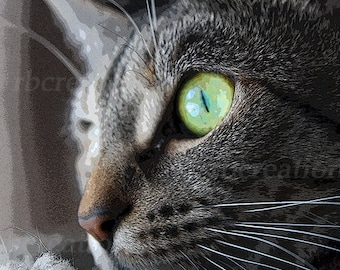 Close up Tortoiseshell Cat Photograph Fine Art Print