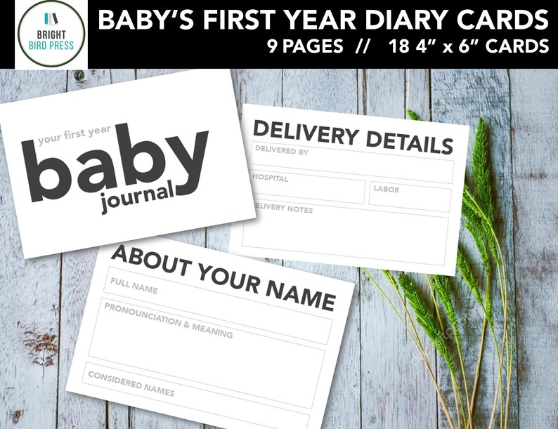 Printable 4 x 6 Baby's First Year Journal Diary Cards image 0