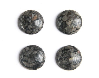 Fossil Stone Round Cabochons (20mm)