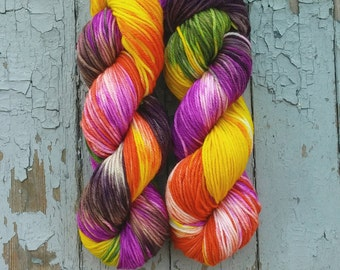 Super Squishy Worsted Superwash Merino Hand Dyed 100 g / 218 yds- Beautyberry *In Stock