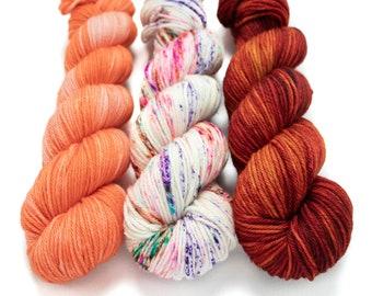Worsted Weight Yarn Kit (3) 100g Skeins with Optional Shawl Pattern, Hand Dyed, Superwash Merino Yarn Kit - Surprise Party, Papaya, Little L