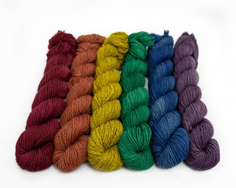 Mini Skein Set, Sock Yarn, Yak Merino Sock Yarn, Superwash Merino Yak Nylon, Fingering Weight 120 g - Autumn Rainbow*In Stock