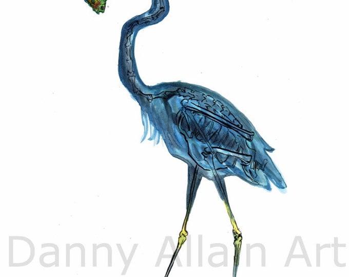 Blue Heron Bones Art Print