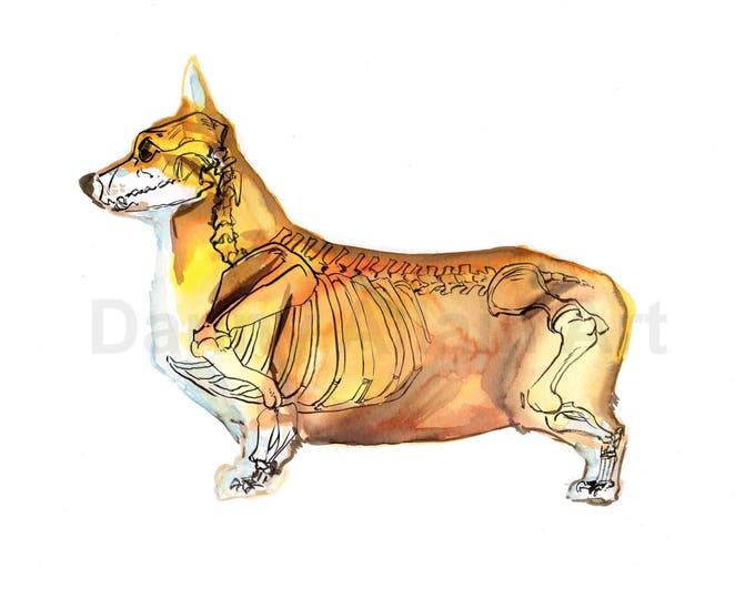 Corgi Bones Art Print