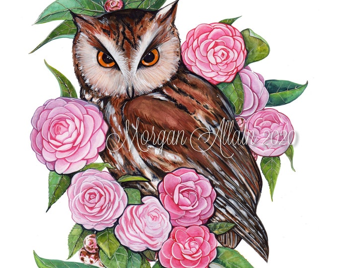 Owl and Camellias 8x10 Print