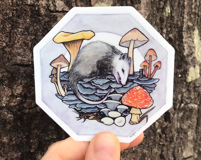 Opossum Kingdom Vinyl Sticker 3x3