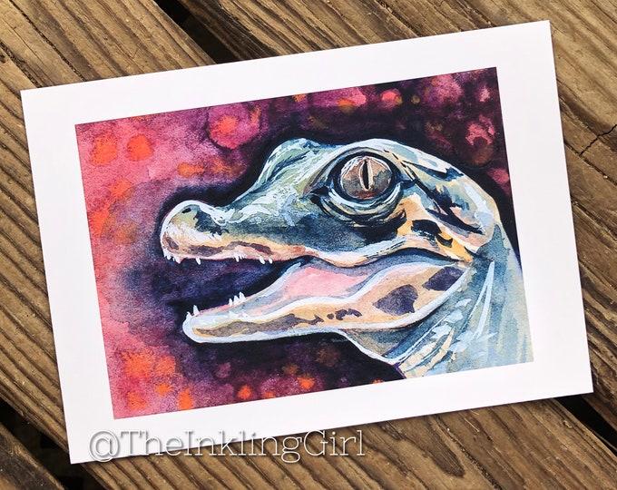 Baby Gator 5x7 Art Print