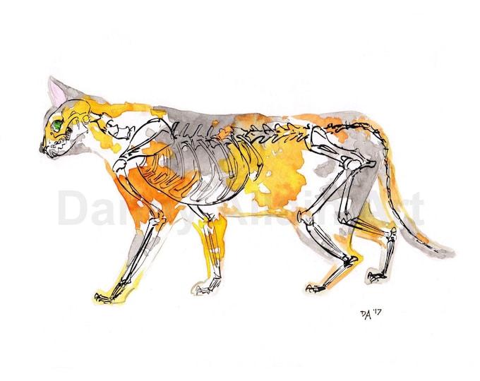 Calico Cat  Bones Art Print