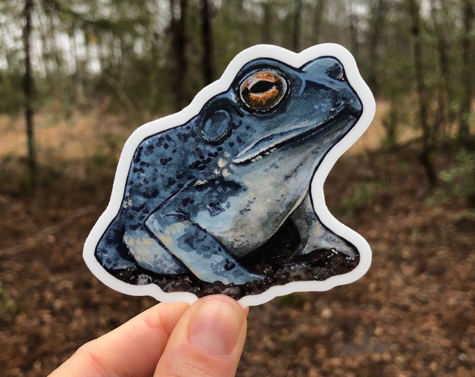 Indigo Toad Vinyl Sticker 3x2.75