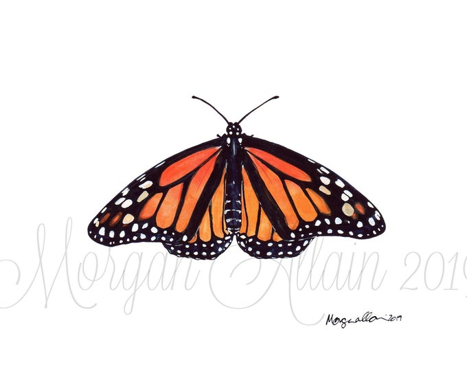 Monarch Butterfly 5x7 Art Print