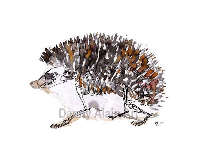 Hedgehog Bones Art Print