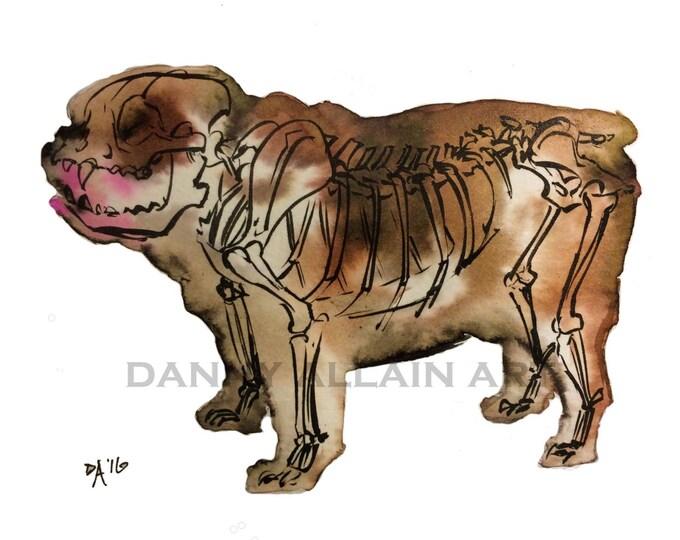 English Bulldog Bones Art Print