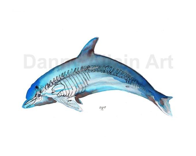 Dolphin Bones Art Print