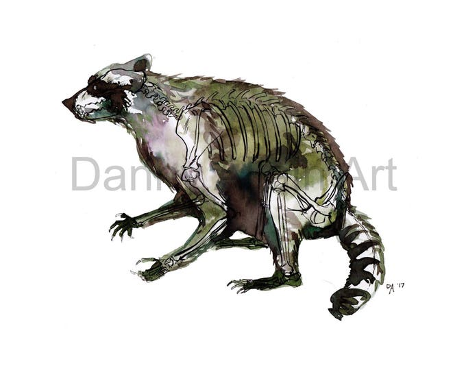 Raccoon Bones Art Print