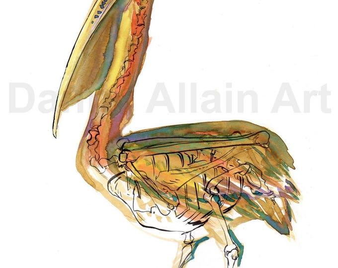 Brown Pelican Bones Art Print