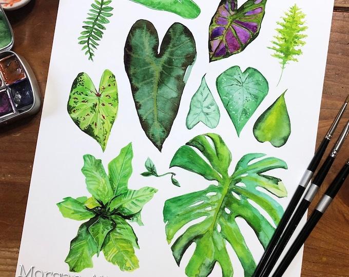 Good Green 8x10 Art Print
