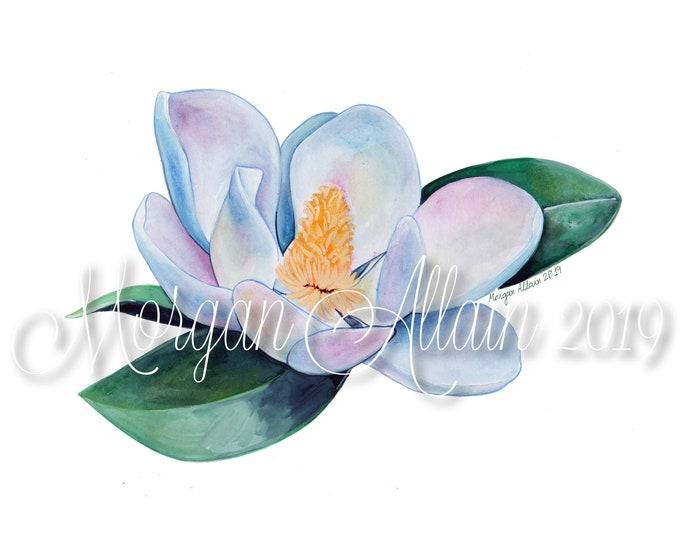 Louisiana Magnolia Bloom No. 2  8x10 Art Print