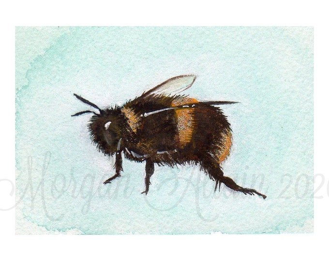 Honeybee 5x7 Art Print