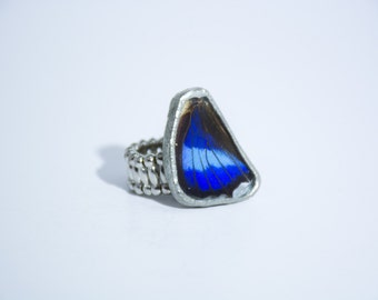 FREE SHIPPING    Real Blue Butterfly Wing Ring