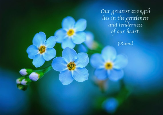 Rumi Quote Inspirational Poetry Greeting Card Blue Etsy