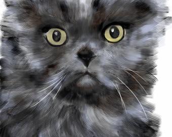 Persian Cat Digital Image, Art & collectibles, pet portrait, cat memorial, wall art, art print, artwork, kitty, black, animal, cat, furry