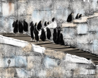 Iran, Art & collectibles, Persepolis, wall art, art print, artwork, painting, chador, Middle East, Persian, women, steps, stone