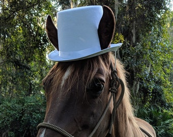 Top Hat for Horses in White, Black, Sky Blue, Royal Blue, Red, Caramel Brown - Equine Coachman Costume - Top Hat for Horse