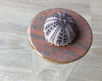 Urchin Shell Glass Container with Bamboo Lid