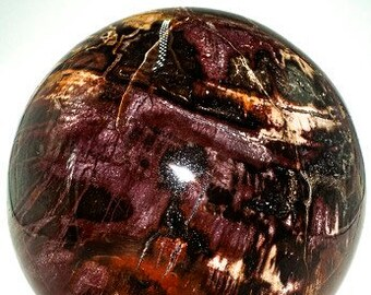"""Petrified Wood Sphere 5.4"""" in diameter  weighs 7.95 Pounds"""