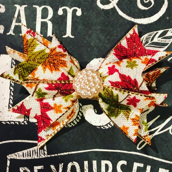 """2"""" Mini Fall Pinwheel Bow - Bows for Dogs and Girls - Fall Bows - Autumn Bows - Bows with Leaves - Dog Hair Bows - Leaves"""