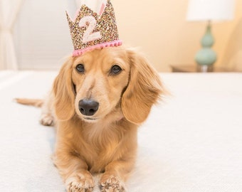 Dog Crown    Dog Party Hat    Dog Birthday Crown    Pale Glitter Crown    Pet Accessory    Pet Hat    Pet Gift