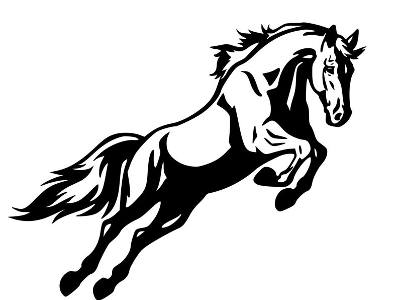 Horse Trailer Decal Horse Decal Horse Jumping Sticker Auto