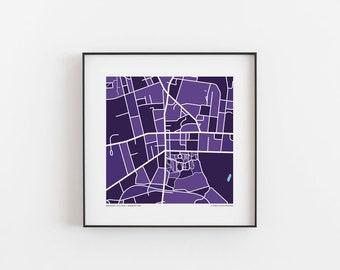 Vassar College Map Print | Etsy