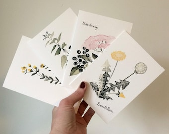 Healthy Herbs card collection
