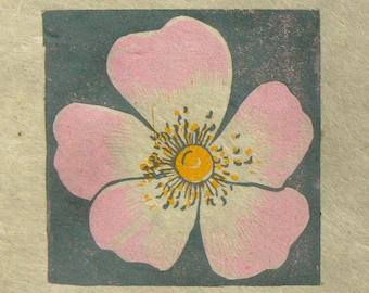 Dog Rose mini linocut print