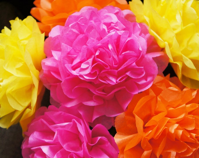 Spring Fling Tissue Paper Flowers (12 count)