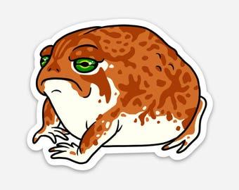 Grumpy Rain Frog Vinyl Sticker