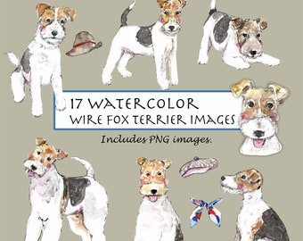 Wirehaired Fox Terrier Dog Robert May Art Greeting Card Set of 6