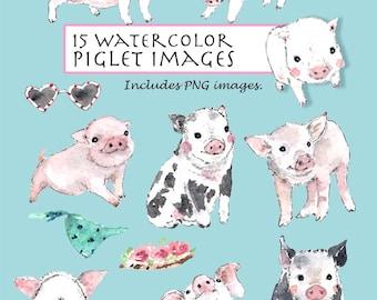 CLIP ART- Watercolor Piglets Set. 15 Images. Digital Download. Pig. Pink. Animal.