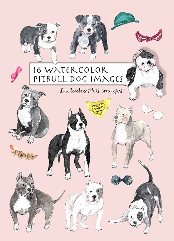 Puppy 16 Images Doggy Digital Download Bow Tie Black CLIP ART- Watercolor Pitbull Dog Set Brown.