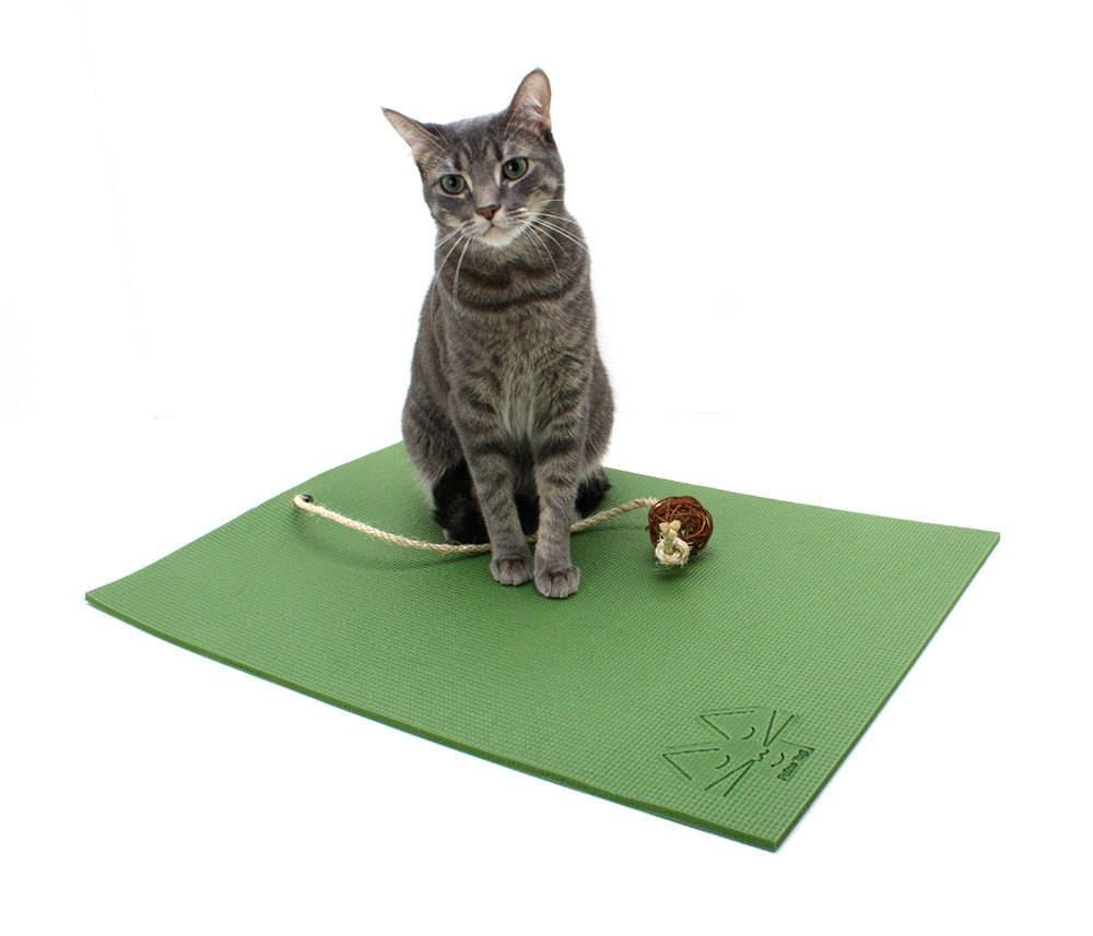 картинка коврика для кошки территории