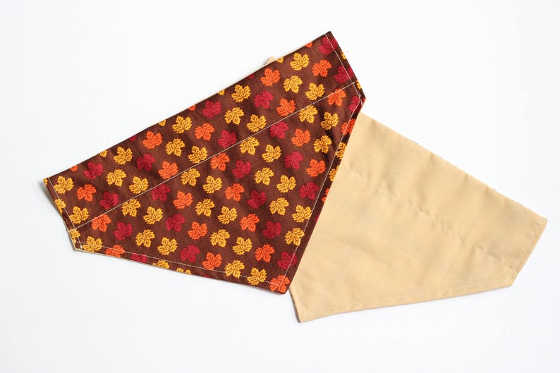 Fall Dog Bandana  Autumn Dog Bandana  Leaves Dog Bandana  image 0