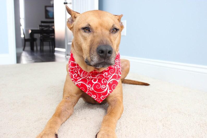 Holiday Dog Bandana  Valentine's Day Dog Bandana  Red image 0