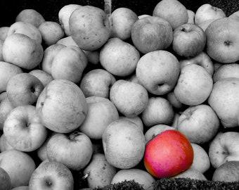Apple photo print-black & white- One Bad Apple