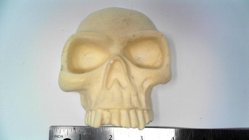 Large Resin Skull Unfinished Flat sided