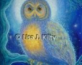 Winter's Night Owl - ...